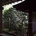 YTS_YTS_20180713_Japan Kyoto Ryoan-ji日本京都龍安寺/世界文化遺產/枯山水石庭054_3A5A9431.jpg