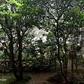 YTS_YTS_20180713_Japan Kyoto Ryoan-ji日本京都龍安寺/世界文化遺產/枯山水石庭055_3A5A9439.jpg
