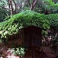 YTS_YTS_20180713_Japan Kyoto Ryoan-ji日本京都龍安寺/世界文化遺產/枯山水石庭058_3A5A9448.jpg
