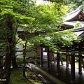 YTS_YTS_20180713_Japan Kyoto Ryoan-ji日本京都龍安寺/世界文化遺產/枯山水石庭063_3A5A9470.jpg