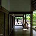 YTS_YTS_20180713_Japan Kyoto Ryoan-ji日本京都龍安寺/世界文化遺產/枯山水石庭064_3A5A9468.jpg