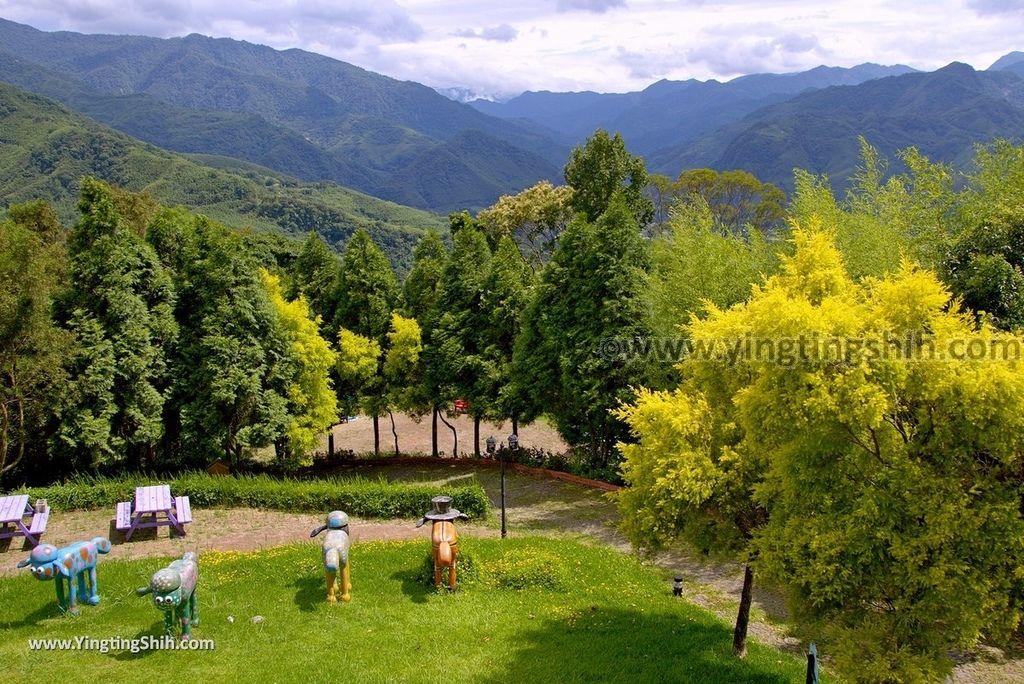 YTS_YTS_20180703_桃園復興綠光森林/浪漫愛情草原/綿羊放牧區Taoyuan Fuxing Green Light Forest116_3A5A0211.jpg