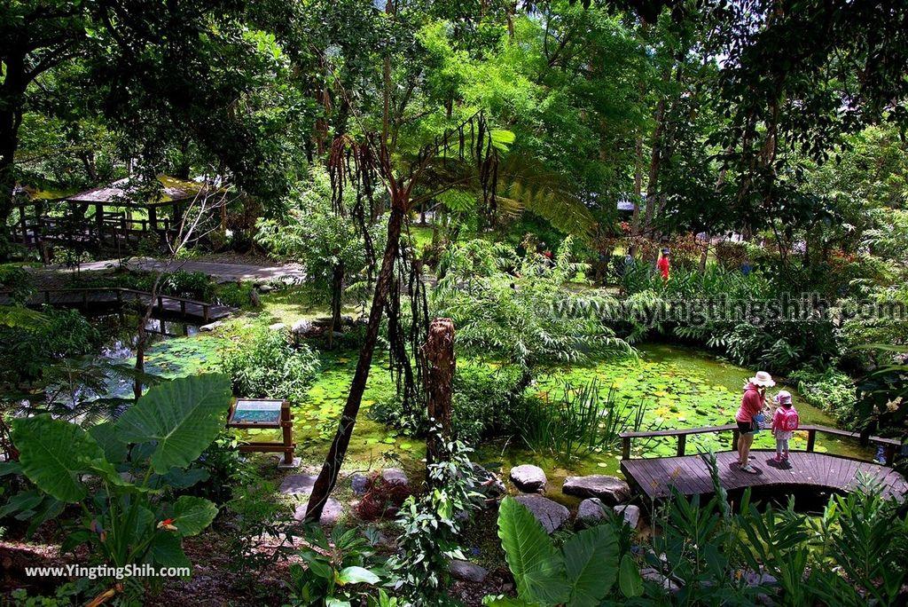 YTS_YTS_20170704_台東卑南知本國家森林遊樂區Taitung Beinan Zhiben National Forest Recreation Area199_3A5A0252.jpg