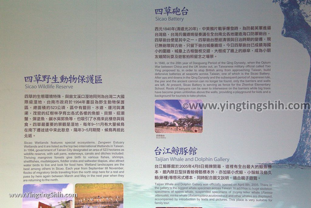 YTS_YTS_20180803_台南北門水晶教堂/井仔腳自行車道Tainan Beimen Crystal Church/Jingzijiao Bike Trail026_3A5A6147.jpg