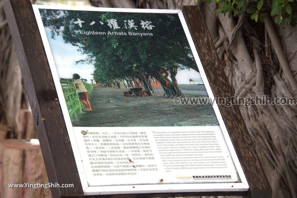 YTS_YTS_20180803_台南北門水晶教堂/井仔腳自行車道Tainan Beimen Crystal Church/Jingzijiao Bike Trail187_3A5A4752.jpg