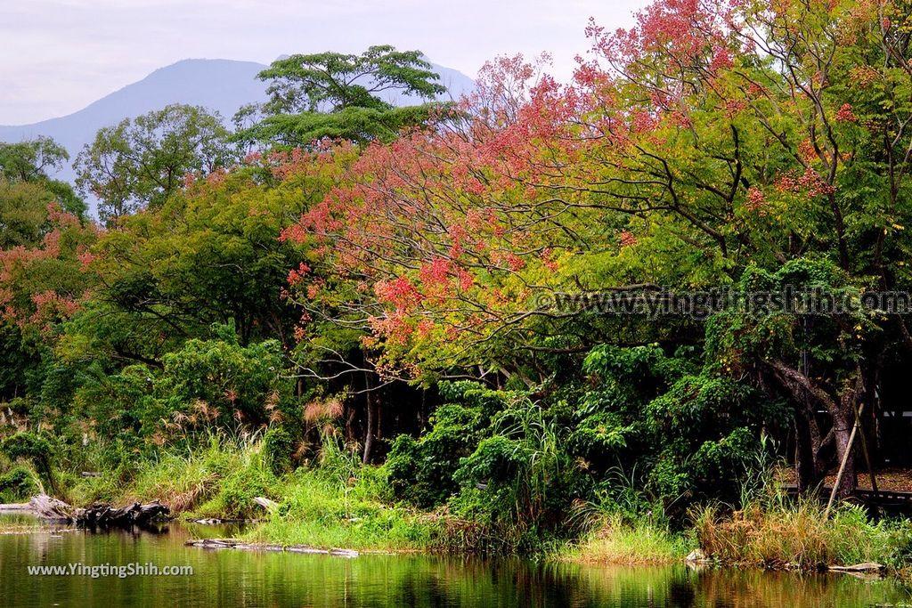 YTS_YTS_20181111_宜蘭羅東林業文化園區/森林鐵路/火車頭Yilan Luodong Forestry Culture Park129_3A5A3833.jpg