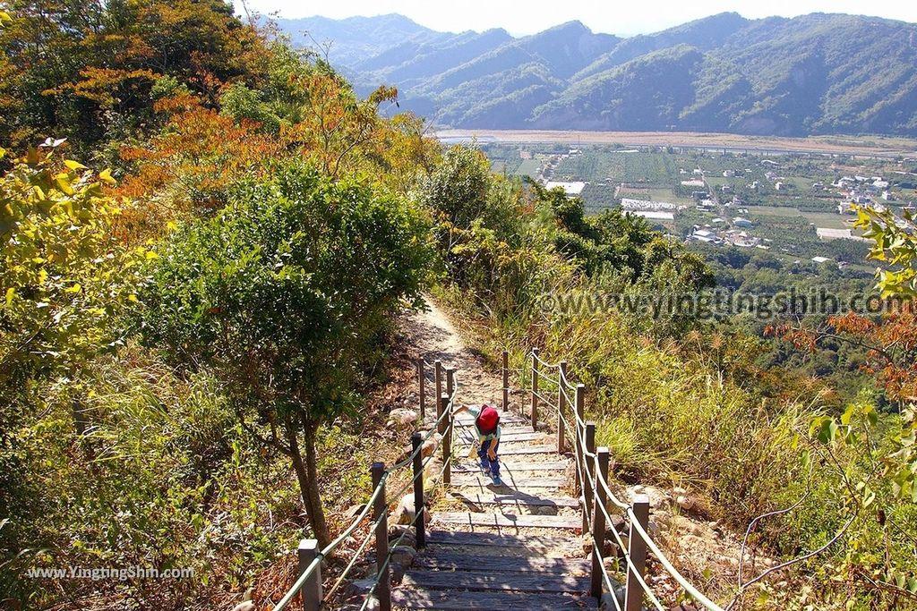 YTS_YTS_20181124_南投草屯九九峰生態藝術園區/森林步道Nantou Caotun Jiujiu Feng Eco-Art Park/Forest Trail089_3A5A7172.jpg