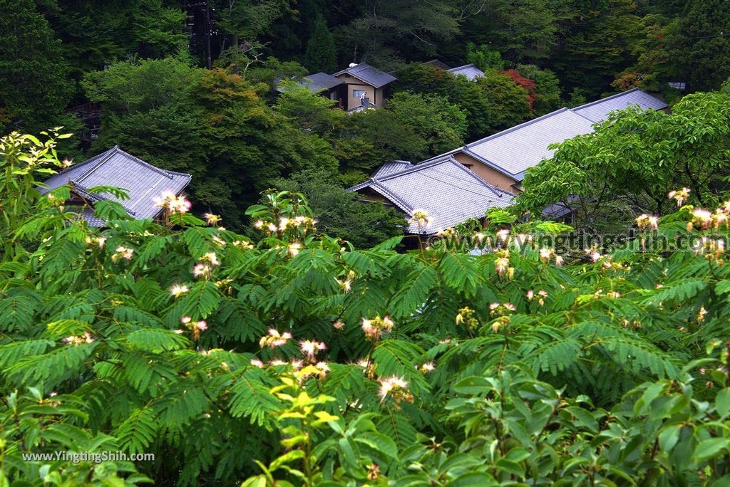 YTS_YTS_20180711_Japan Kansai Kyoto Arashiyama Park/Togetu Kobashi Bridge日本京都嵐山公園龜山地區/渡月橋106_3A5A6752.jpg