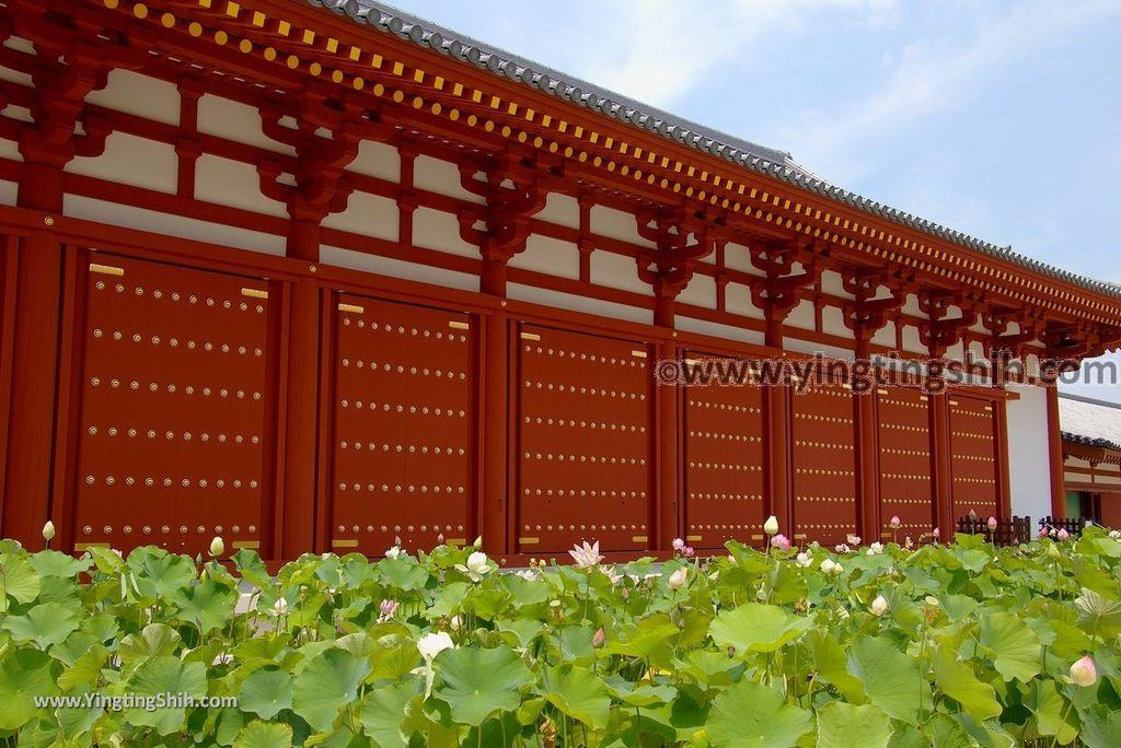 YTS_YTS_20180716_Japan Kansai Nara Yakushi-ji Temple/Genjo Sanzoin Garan日本關西奈良藥師寺/玄奘三蔵院伽藍151_3A5A3952.jpg