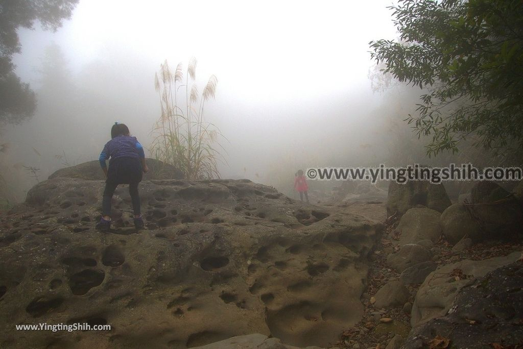 YTS_YTS_20181223_苗栗南庄月球石秘境Miaoli Nanzhuang Moon Rock045_3A5A5193.jpg