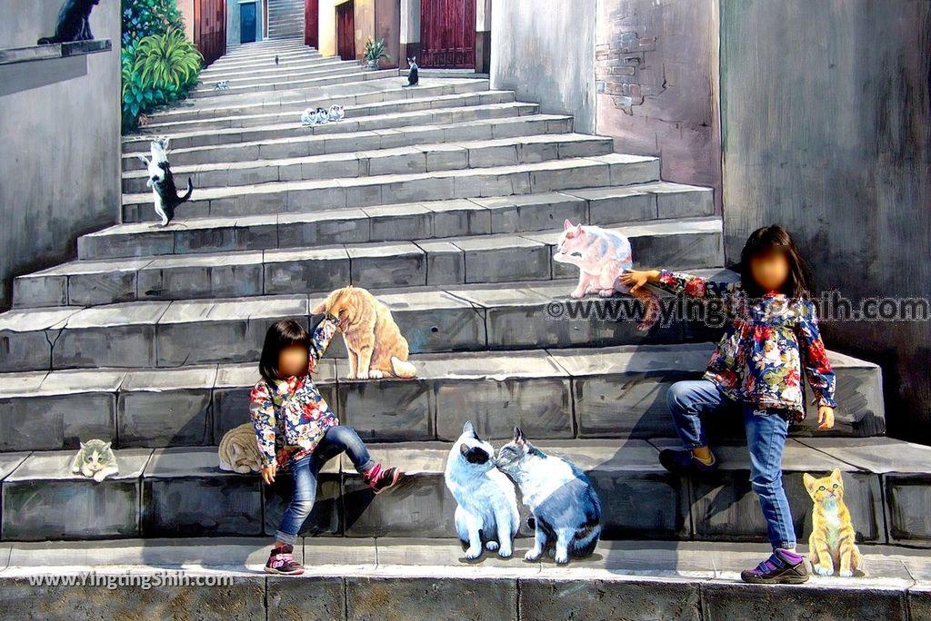 YTS_YTS_20181229_嘉義民雄鄉公所民雄打貓貓咪彩繪牆Chiayi Minxiong Cat Painted Wall041_3A5A4049.jpg