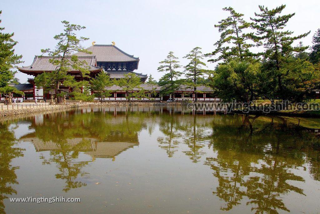 YTS_YTS_20180717_Japan Kansai Nara Todai-ji日本關西奈良東大寺/世界文化遺產065_3A5A7761.jpg