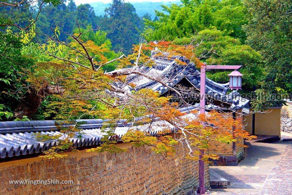 YTS_YTS_20180717Japan Kansai Nara Todai-ji Shosoin Main Warehouse日本關西奈良東大寺法華堂(三月堂)/手向山八幡宮/正倉院191_3A5A0875.jpg