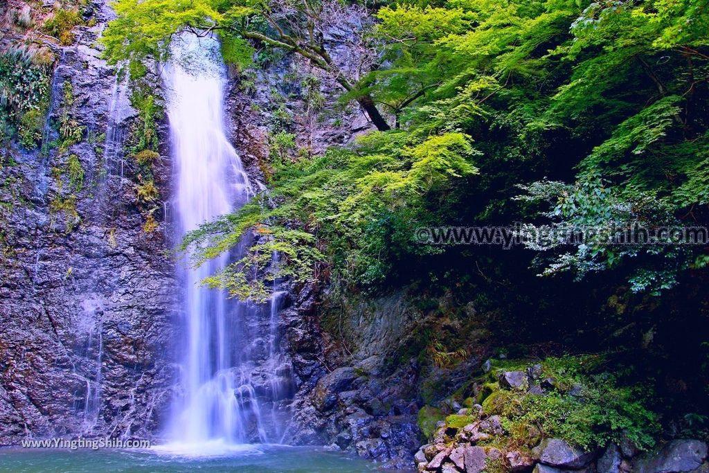 YTS_YTS_20180721_日本關西大阪箕面公園/箕面大滝/瀑布/釣鐘淵/地獄谷Japan Kansai Osaka Minoh Waterfall/Minoo Park043_3A5A3021.jpg