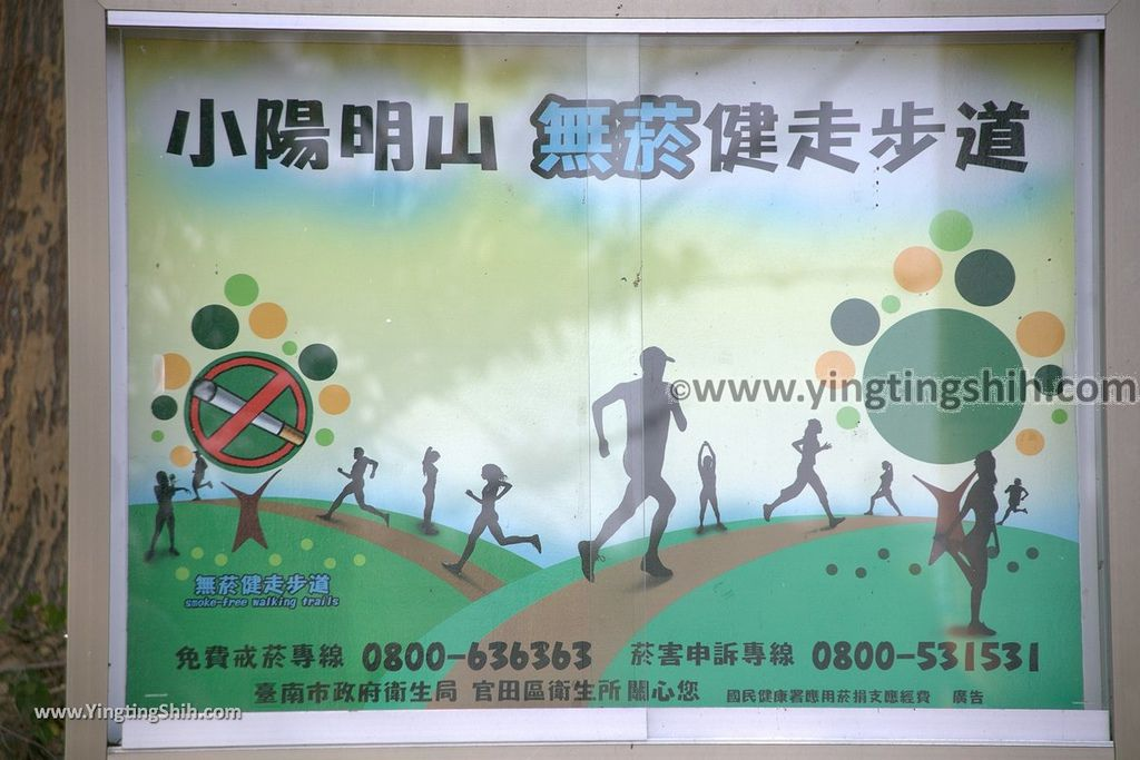 YTS_YTS_20190209_台南官田川文山森林生態保育農場/步道Tainan Guantian Chuan Wenshan Forest Ecological Conservation Farm002_539A9112.jpg