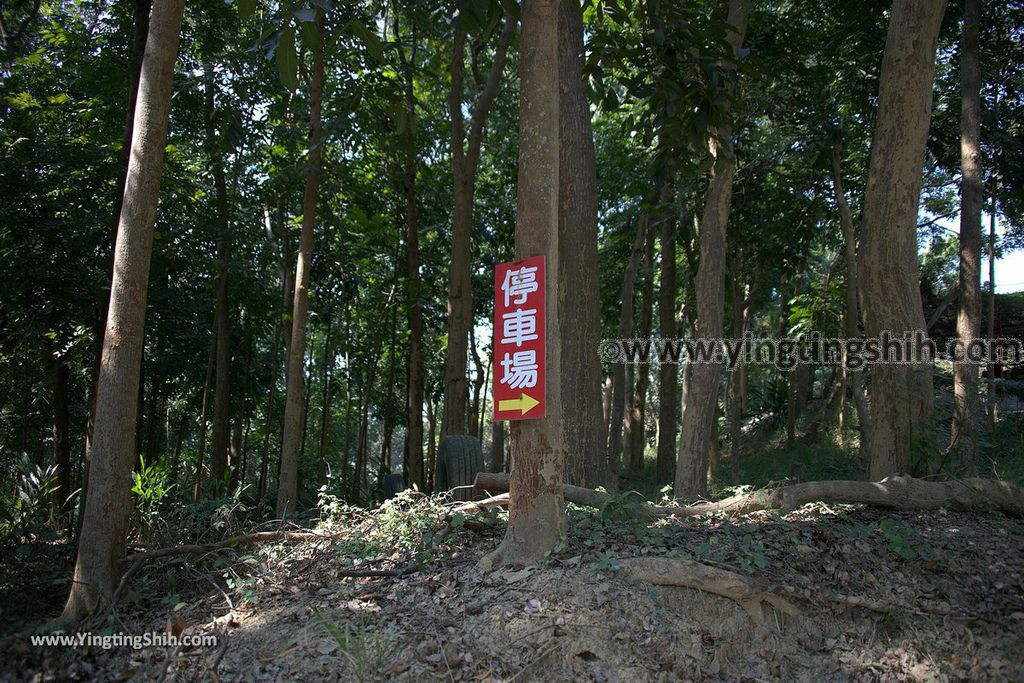 YTS_YTS_20190209_台南官田川文山森林生態保育農場/步道Tainan Guantian Chuan Wenshan Forest Ecological Conservation Farm005_539A9115.jpg