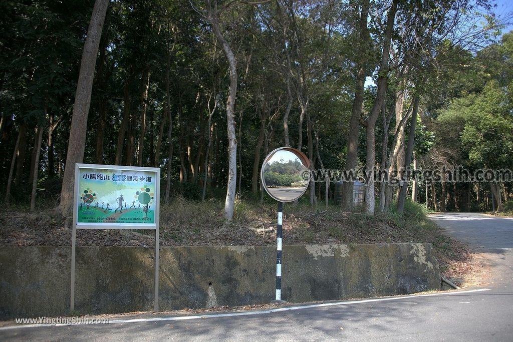 YTS_YTS_20190209_台南官田川文山森林生態保育農場/步道Tainan Guantian Chuan Wenshan Forest Ecological Conservation Farm001_539A9111.jpg