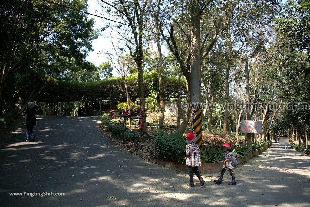 YTS_YTS_20190209_台南官田川文山森林生態保育農場/步道Tainan Guantian Chuan Wenshan Forest Ecological Conservation Farm013_539A9128.jpg