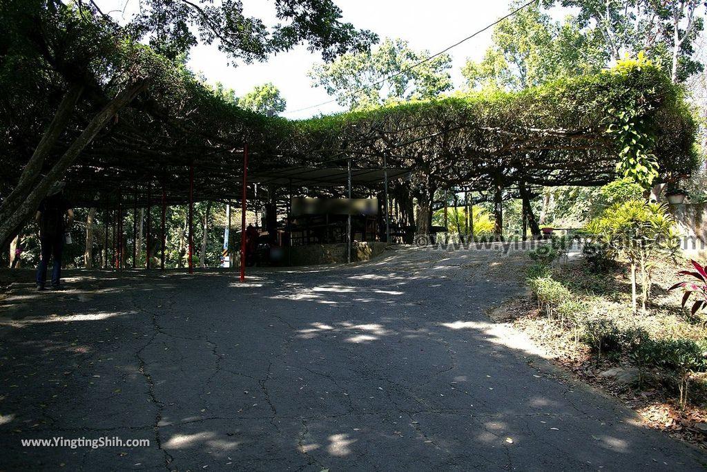 YTS_YTS_20190209_台南官田川文山森林生態保育農場/步道Tainan Guantian Chuan Wenshan Forest Ecological Conservation Farm014_539A9130.jpg