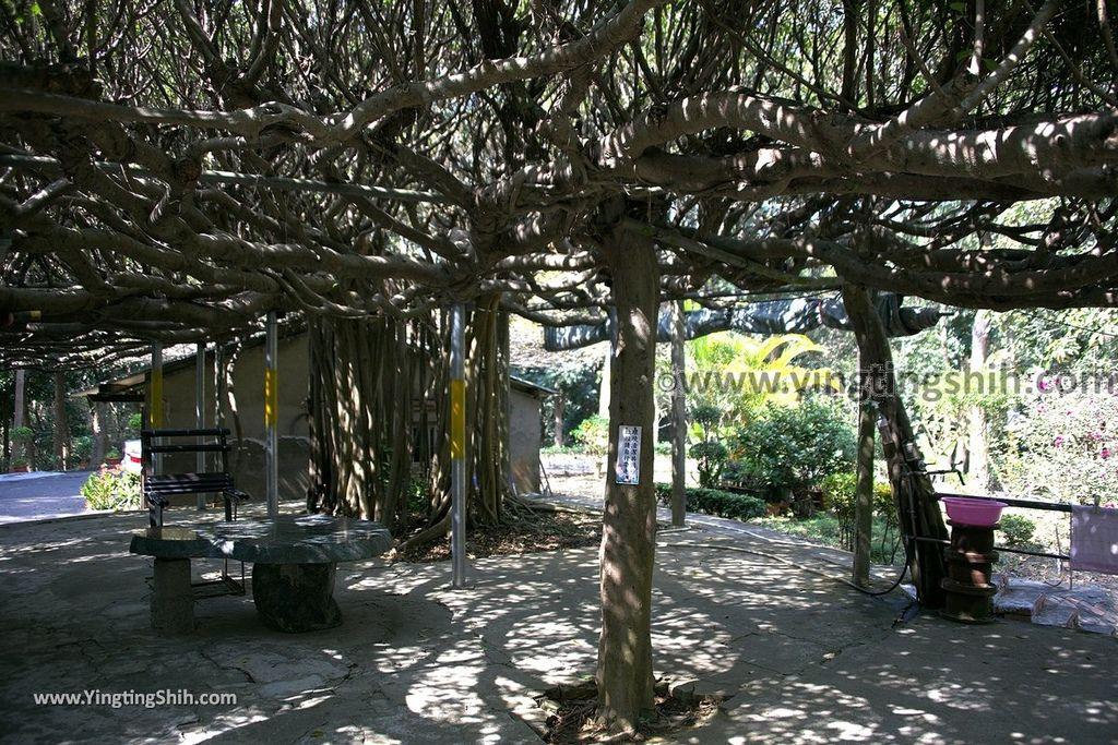 YTS_YTS_20190209_台南官田川文山森林生態保育農場/步道Tainan Guantian Chuan Wenshan Forest Ecological Conservation Farm017_539A9136.jpg