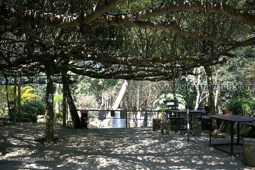 YTS_YTS_20190209_台南官田川文山森林生態保育農場/步道Tainan Guantian Chuan Wenshan Forest Ecological Conservation Farm016_539A9134.jpg