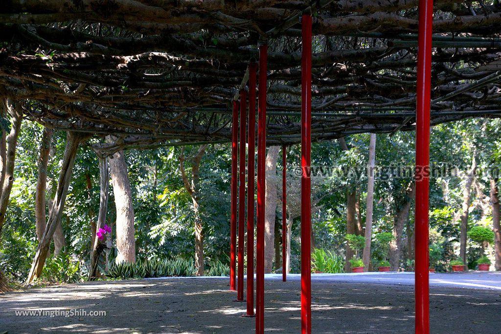 YTS_YTS_20190209_台南官田川文山森林生態保育農場/步道Tainan Guantian Chuan Wenshan Forest Ecological Conservation Farm022_539A9131.jpg