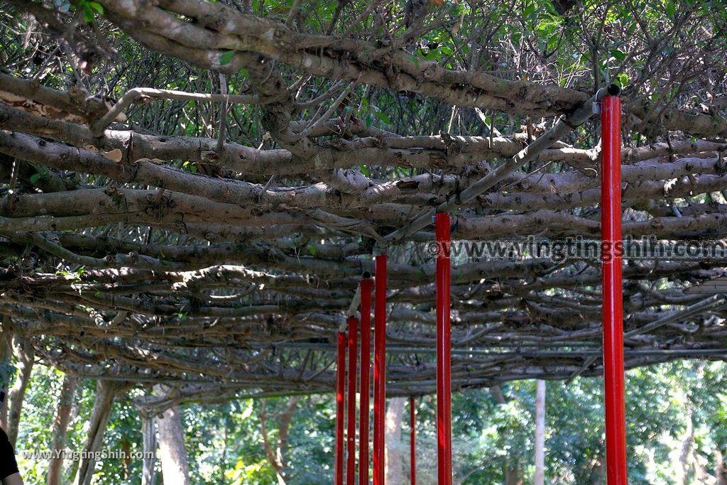 YTS_YTS_20190209_台南官田川文山森林生態保育農場/步道Tainan Guantian Chuan Wenshan Forest Ecological Conservation Farm023_539A9132.jpg