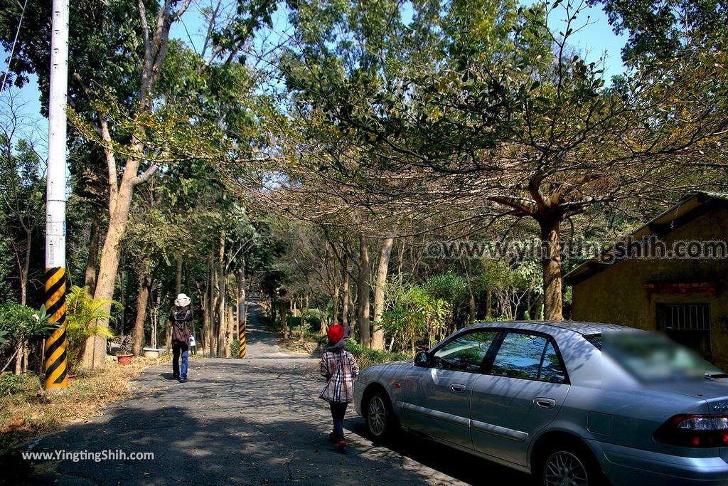 YTS_YTS_20190209_台南官田川文山森林生態保育農場/步道Tainan Guantian Chuan Wenshan Forest Ecological Conservation Farm026_539A9145.jpg
