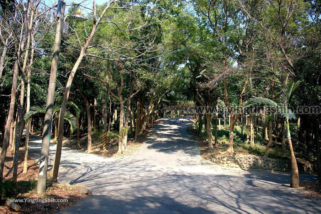 YTS_YTS_20190209_台南官田川文山森林生態保育農場/步道Tainan Guantian Chuan Wenshan Forest Ecological Conservation Farm029_539A9152.jpg