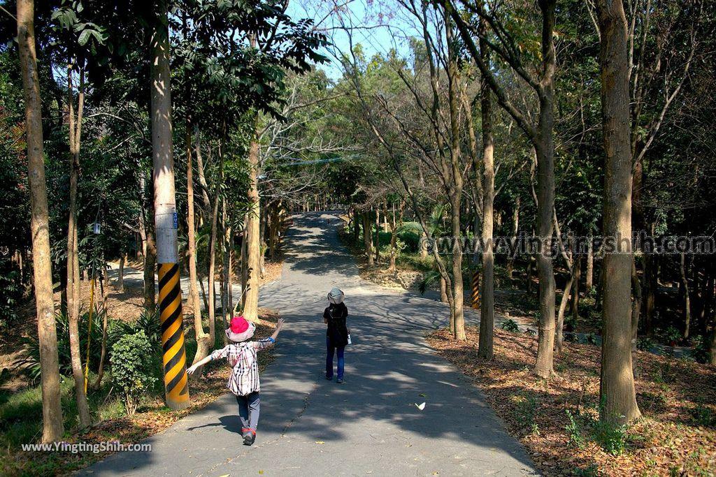 YTS_YTS_20190209_台南官田川文山森林生態保育農場/步道Tainan Guantian Chuan Wenshan Forest Ecological Conservation Farm027_539A9147.jpg