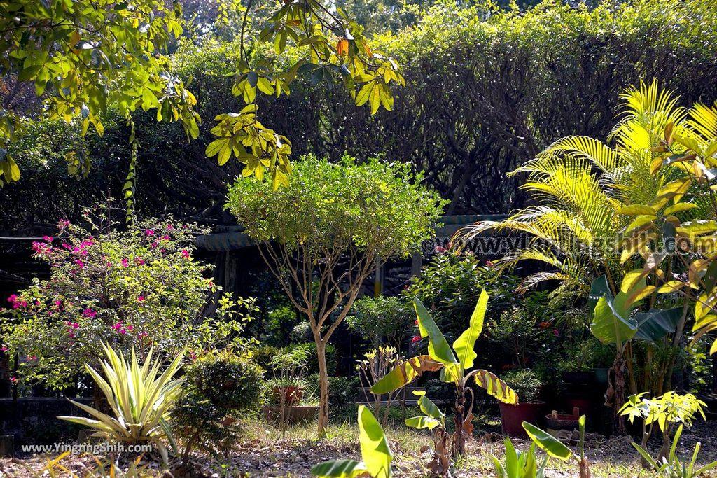 YTS_YTS_20190209_台南官田川文山森林生態保育農場/步道Tainan Guantian Chuan Wenshan Forest Ecological Conservation Farm028_539A9150.jpg
