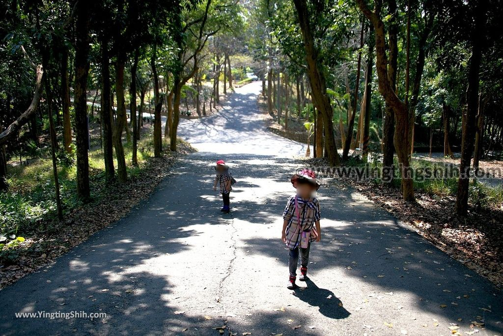 YTS_YTS_20190209_台南官田川文山森林生態保育農場/步道Tainan Guantian Chuan Wenshan Forest Ecological Conservation Farm034_539A9157.jpg