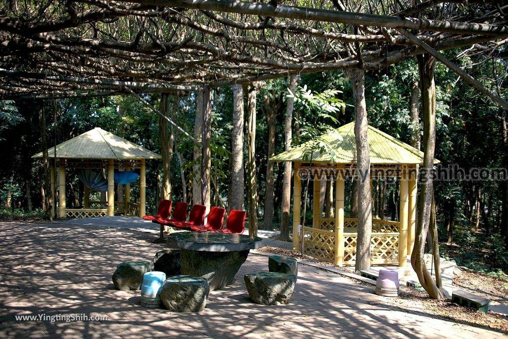 YTS_YTS_20190209_台南官田川文山森林生態保育農場/步道Tainan Guantian Chuan Wenshan Forest Ecological Conservation Farm039_539A9173.jpg