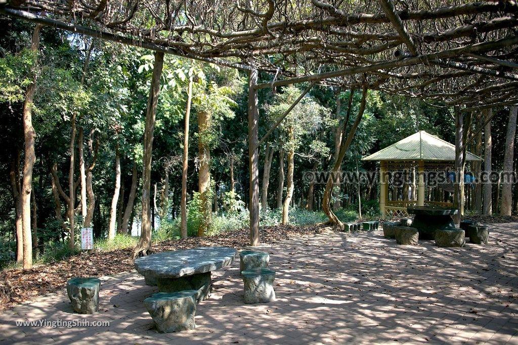 YTS_YTS_20190209_台南官田川文山森林生態保育農場/步道Tainan Guantian Chuan Wenshan Forest Ecological Conservation Farm042_539A9165.jpg
