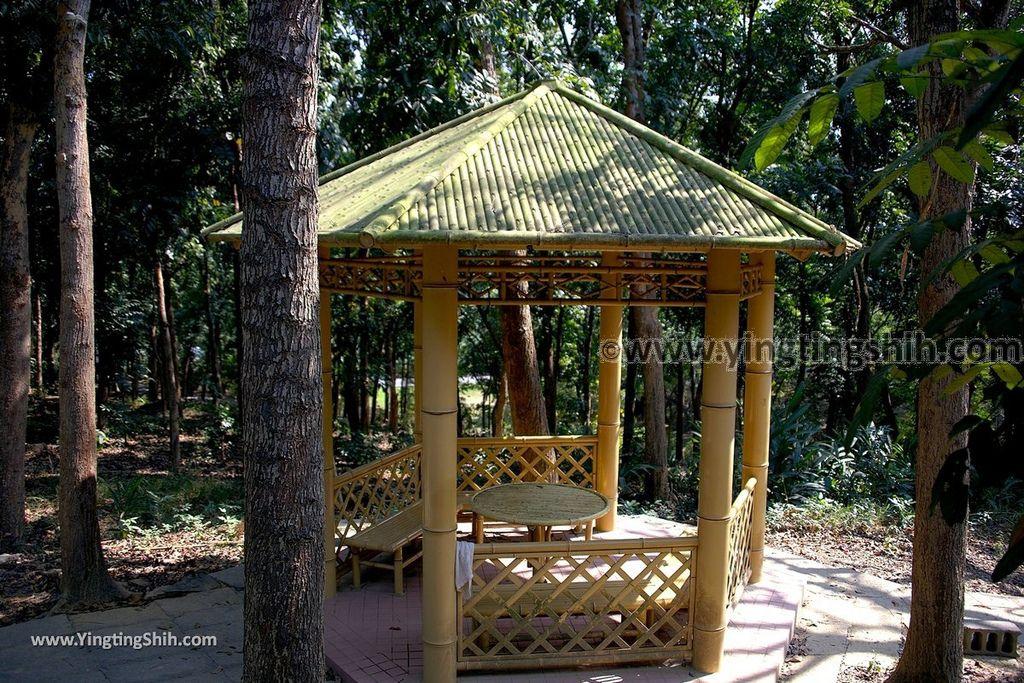YTS_YTS_20190209_台南官田川文山森林生態保育農場/步道Tainan Guantian Chuan Wenshan Forest Ecological Conservation Farm041_539A9175.jpg