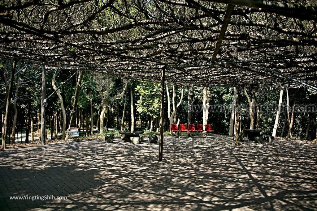 YTS_YTS_20190209_台南官田川文山森林生態保育農場/步道Tainan Guantian Chuan Wenshan Forest Ecological Conservation Farm044_539A9163.jpg