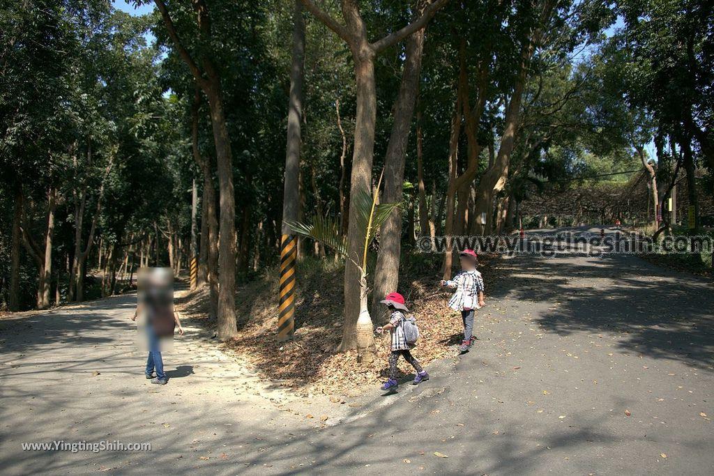 YTS_YTS_20190209_台南官田川文山森林生態保育農場/步道Tainan Guantian Chuan Wenshan Forest Ecological Conservation Farm048_539A9177.jpg