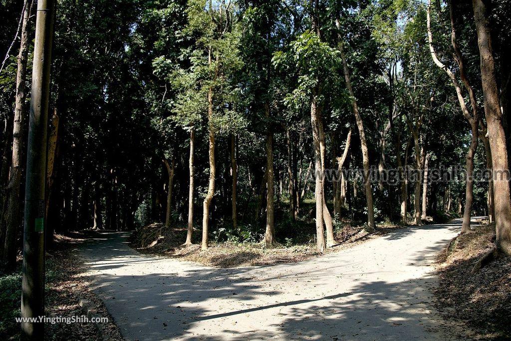 YTS_YTS_20190209_台南官田川文山森林生態保育農場/步道Tainan Guantian Chuan Wenshan Forest Ecological Conservation Farm051_539A9288.jpg