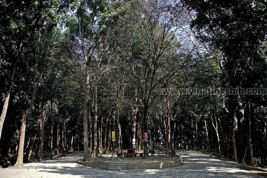 YTS_YTS_20190209_台南官田川文山森林生態保育農場/步道Tainan Guantian Chuan Wenshan Forest Ecological Conservation Farm052_539A9241.jpg