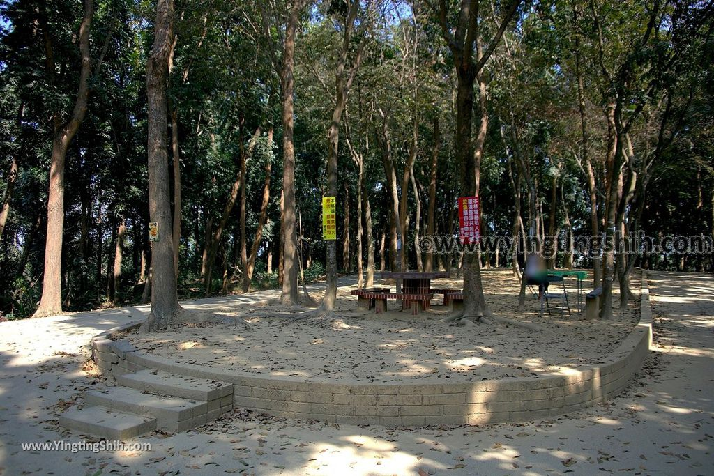YTS_YTS_20190209_台南官田川文山森林生態保育農場/步道Tainan Guantian Chuan Wenshan Forest Ecological Conservation Farm057_539A9242.jpg
