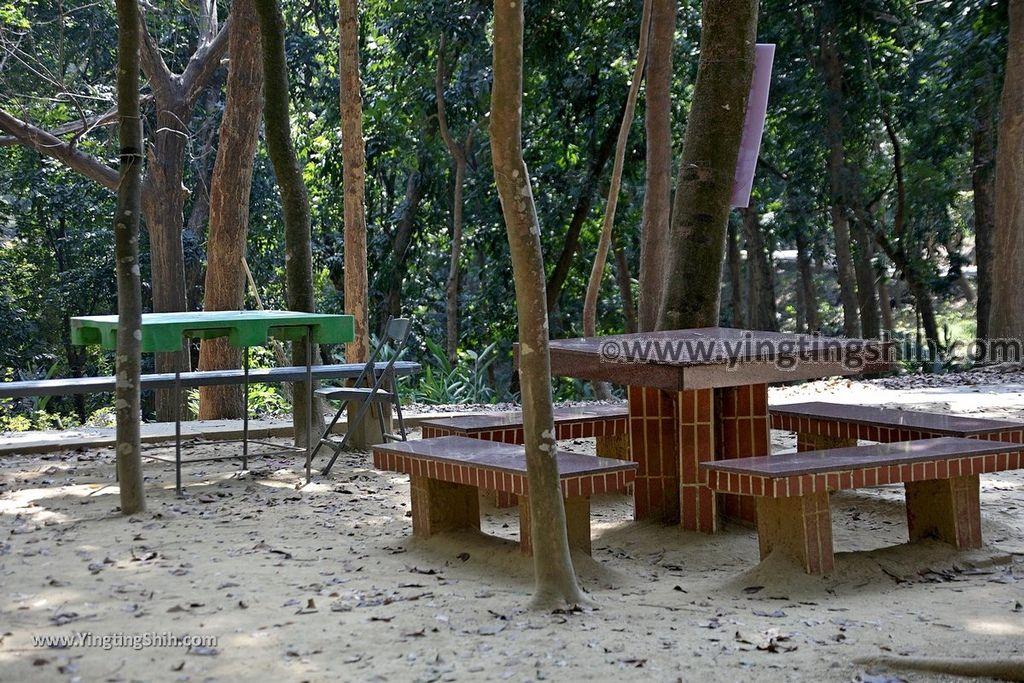 YTS_YTS_20190209_台南官田川文山森林生態保育農場/步道Tainan Guantian Chuan Wenshan Forest Ecological Conservation Farm058_539A9246.jpg