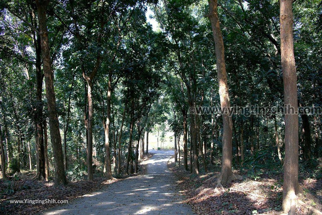 YTS_YTS_20190209_台南官田川文山森林生態保育農場/步道Tainan Guantian Chuan Wenshan Forest Ecological Conservation Farm060_539A9248.jpg