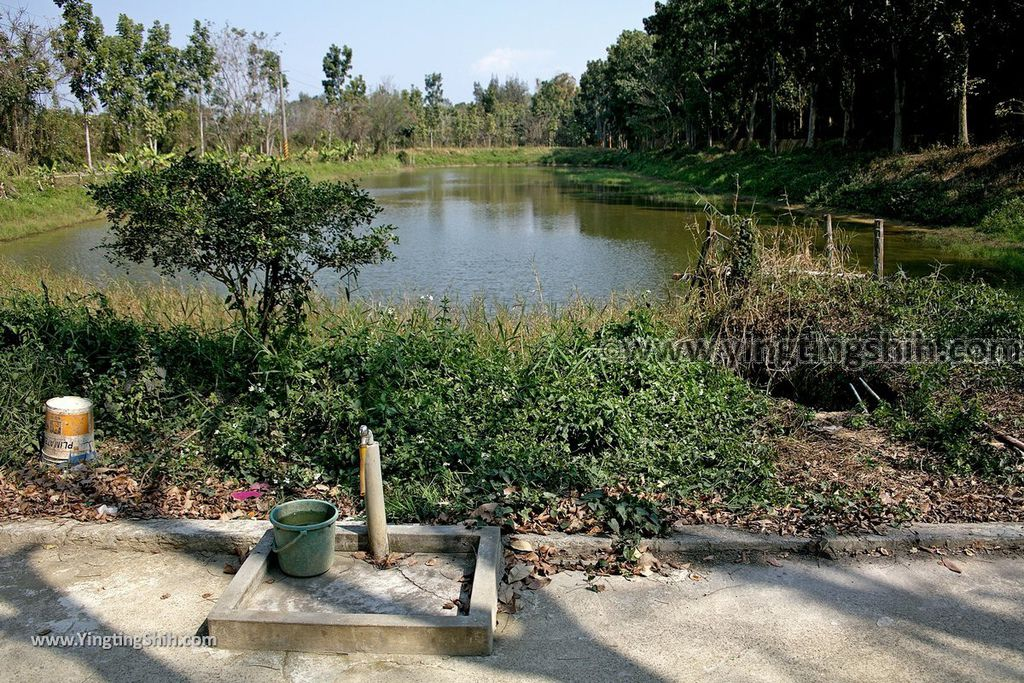 YTS_YTS_20190209_台南官田川文山森林生態保育農場/步道Tainan Guantian Chuan Wenshan Forest Ecological Conservation Farm066_539A9259.jpg