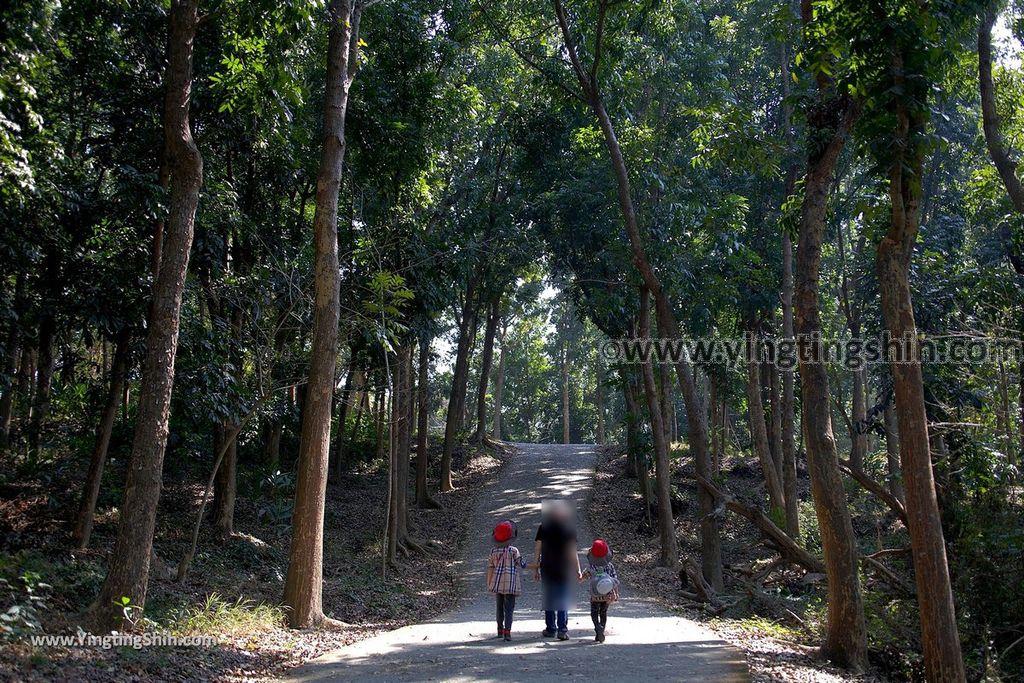 YTS_YTS_20190209_台南官田川文山森林生態保育農場/步道Tainan Guantian Chuan Wenshan Forest Ecological Conservation Farm070_539A9275.jpg