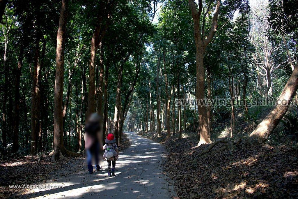 YTS_YTS_20190209_台南官田川文山森林生態保育農場/步道Tainan Guantian Chuan Wenshan Forest Ecological Conservation Farm071_539A9186.jpg