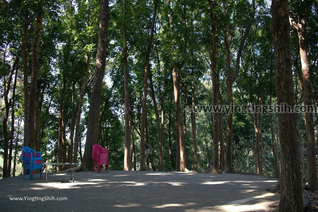 YTS_YTS_20190209_台南官田川文山森林生態保育農場/步道Tainan Guantian Chuan Wenshan Forest Ecological Conservation Farm073_539A9190.jpg