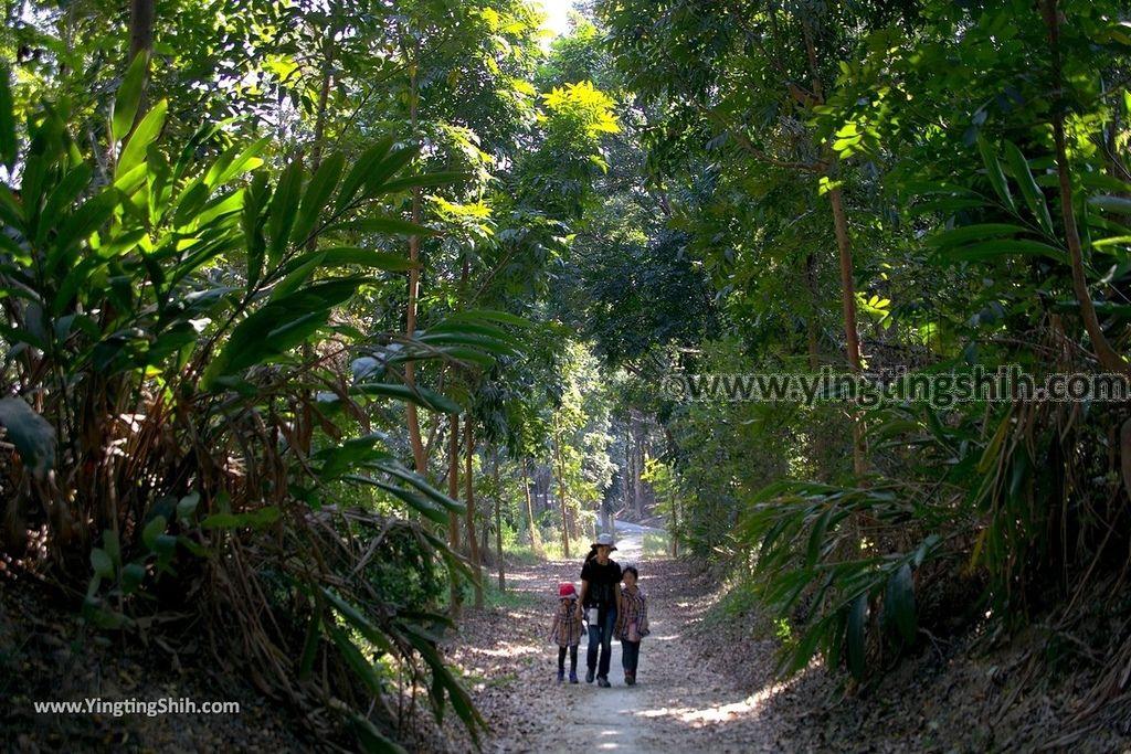 YTS_YTS_20190209_台南官田川文山森林生態保育農場/步道Tainan Guantian Chuan Wenshan Forest Ecological Conservation Farm077_539A9215.jpg