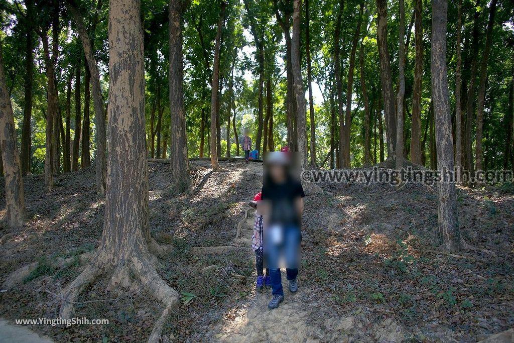 YTS_YTS_20190209_台南官田川文山森林生態保育農場/步道Tainan Guantian Chuan Wenshan Forest Ecological Conservation Farm075_539A9193.jpg
