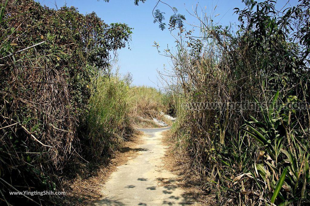 YTS_YTS_20190209_台南官田川文山森林生態保育農場/步道Tainan Guantian Chuan Wenshan Forest Ecological Conservation Farm080_539A9221.jpg