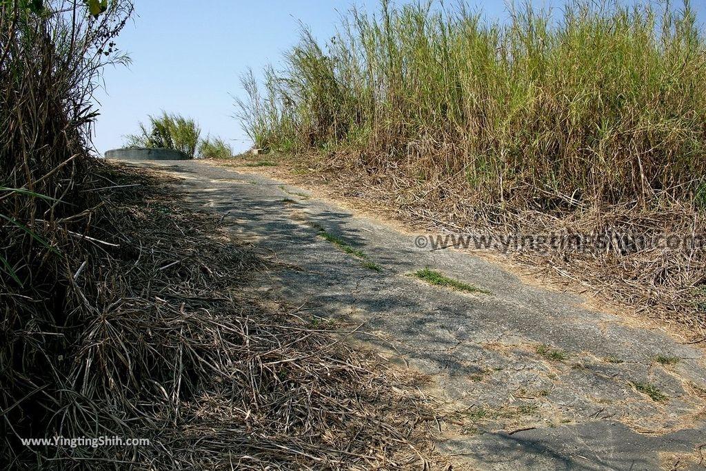 YTS_YTS_20190209_台南官田川文山森林生態保育農場/步道Tainan Guantian Chuan Wenshan Forest Ecological Conservation Farm082_539A9222.jpg